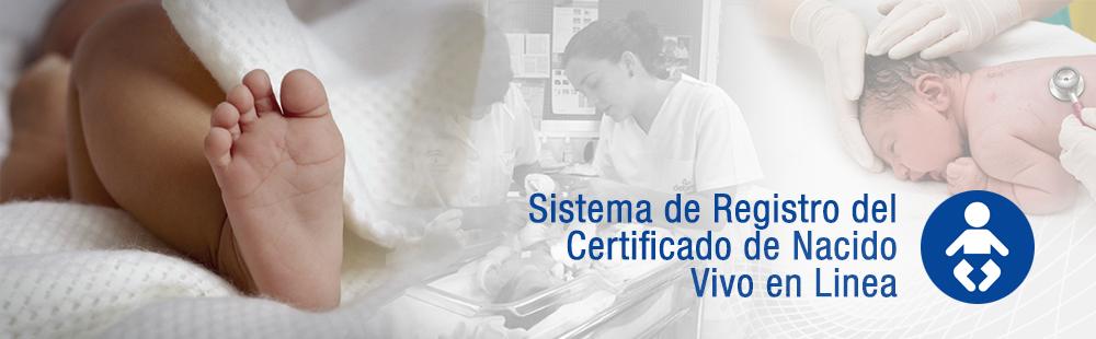 CNV :. Sistema de Registro del Certificado de Nacido Vivo en Linea ...